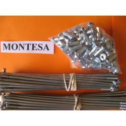 montesa cota 49 rapita 50 and scorpion 50 spokes set