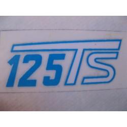 ducati 125 Ts tapas laterales